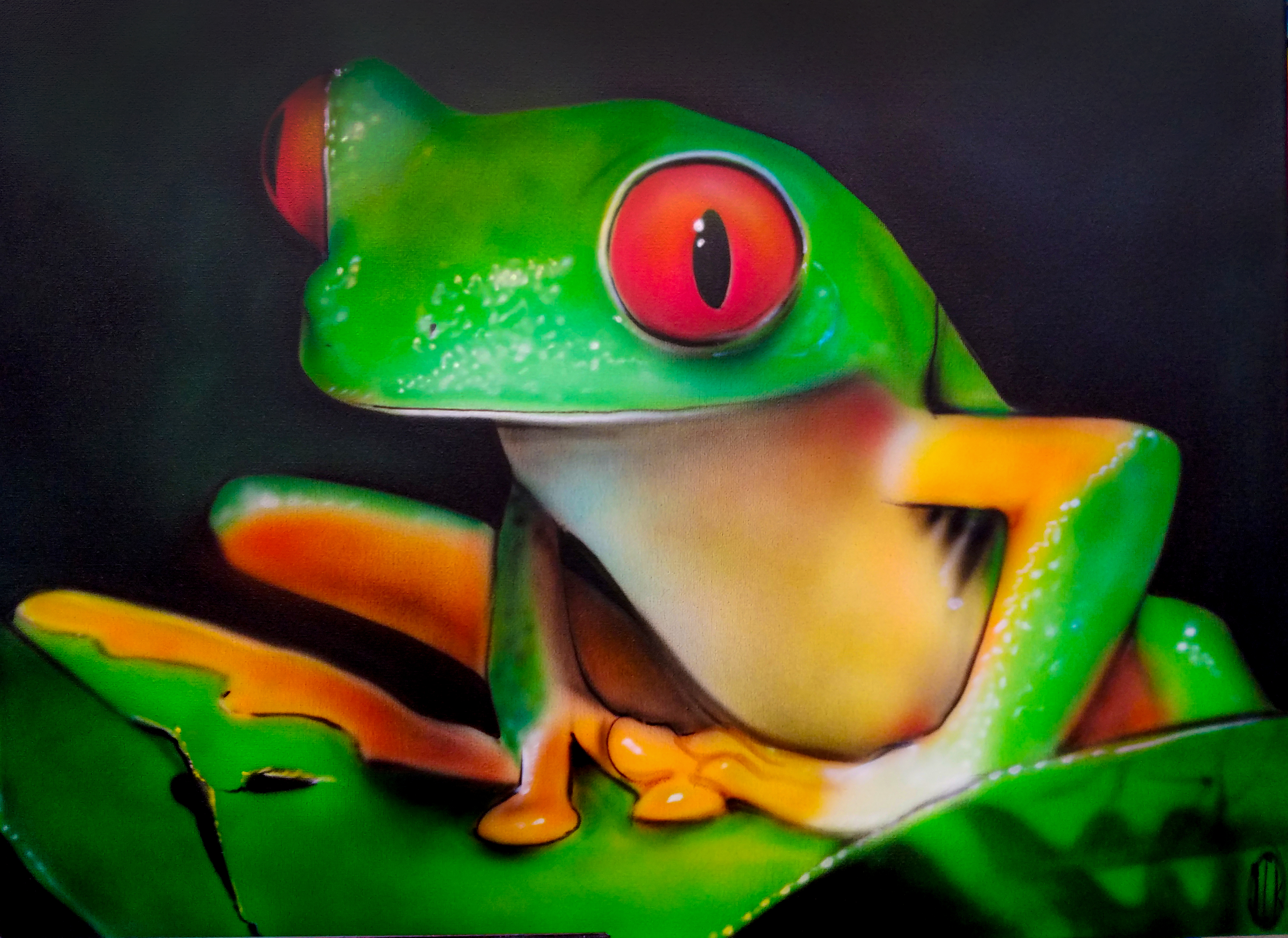 tree frog on canvas airbrushed